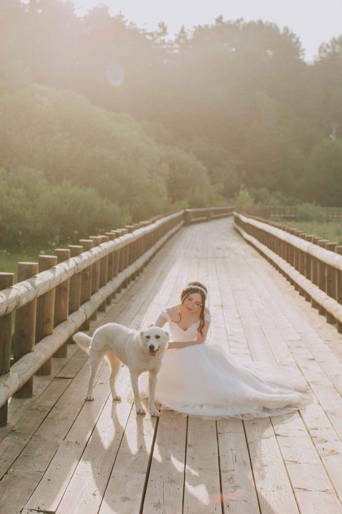 ebru alparslan afterwedding bolu 17 683x1024 - Ebru & Alparslan // Bolu